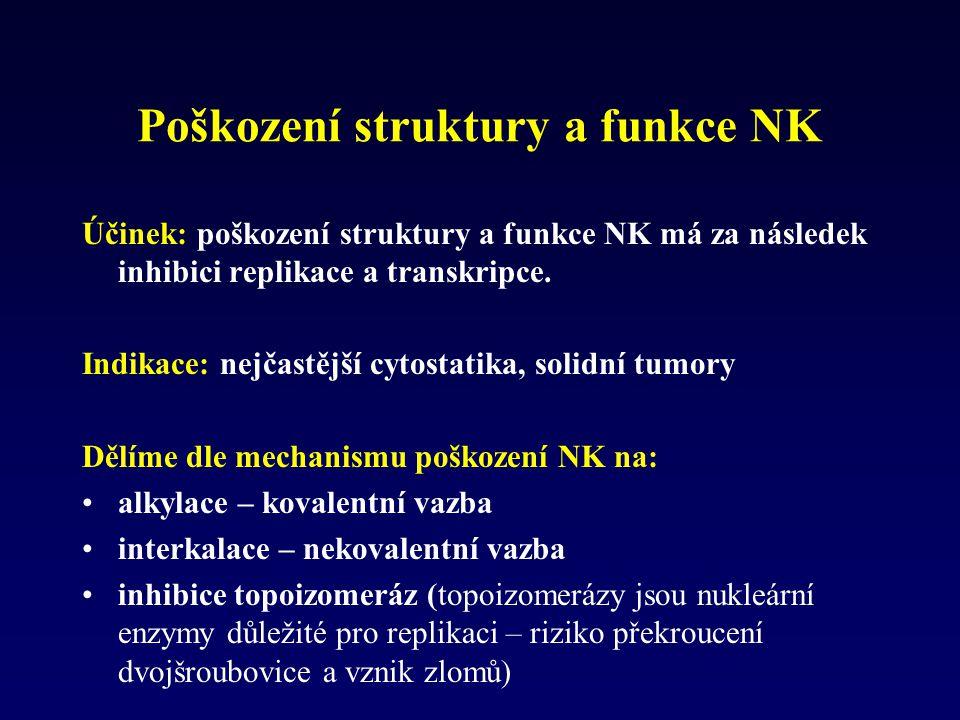 Poškození struktury a funkce NK