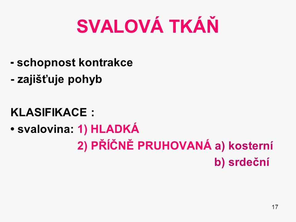 SVALOVÁ TKÁŇ - schopnost kontrakce - zajišťuje pohyb KLASIFIKACE :