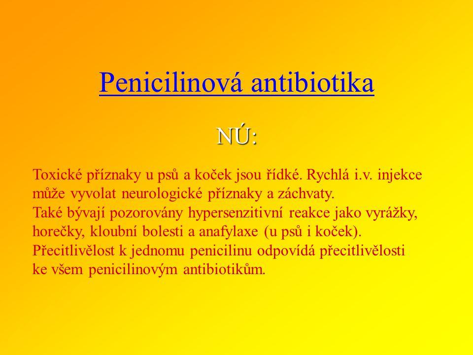 Penicilinová antibiotika