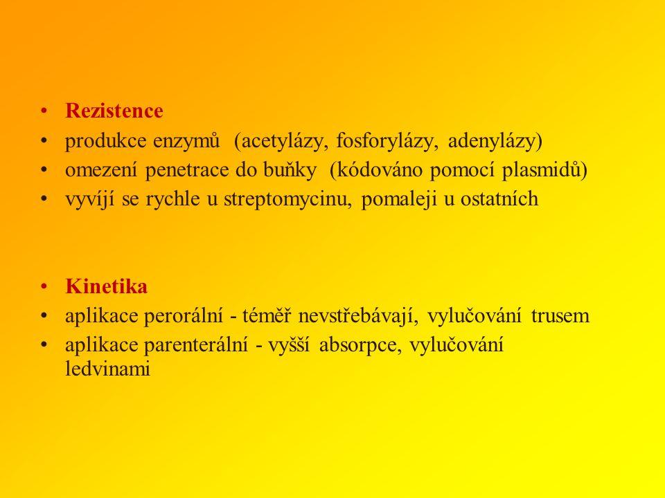 Rezistence produkce enzymů (acetylázy, fosforylázy, adenylázy) omezení penetrace do buňky (kódováno pomocí plasmidů)