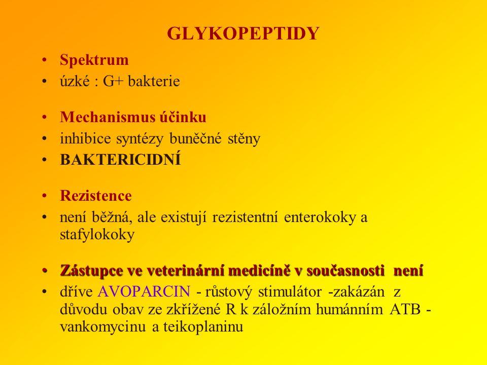 GLYKOPEPTIDY Spektrum úzké : G+ bakterie Mechanismus účinku