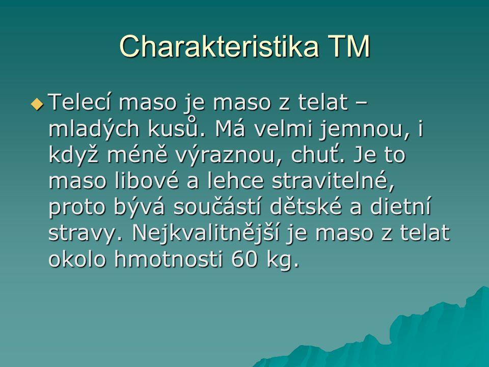 Charakteristika TM