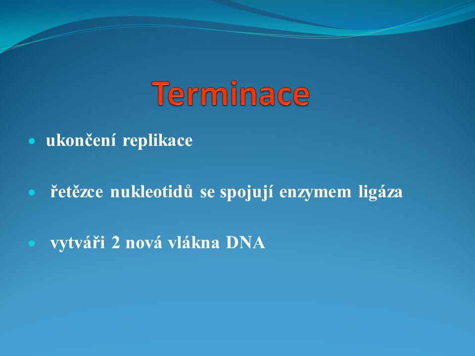 Terminace ukončení replikace