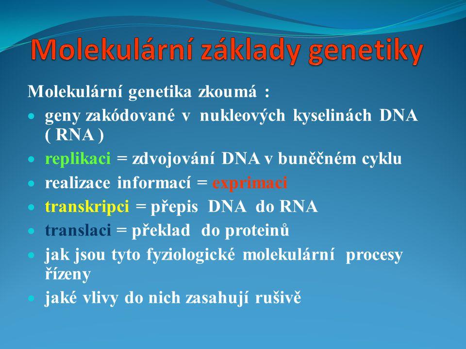 Molekulární základy genetiky