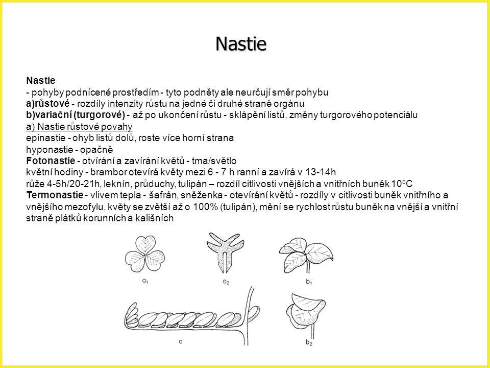 Nastie Nastie. - pohyby podnícené prostředím - tyto podněty ale neurčují směr pohybu.