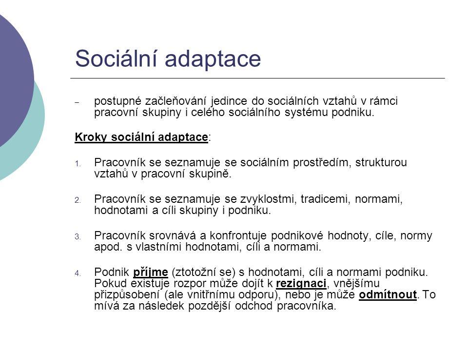 Sociální adaptace postupné začleňování jedince do sociálních vztahů v rámci pracovní skupiny i celého sociálního systému podniku.