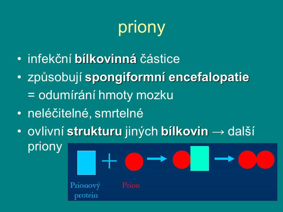 priony infekční bílkovinná částice