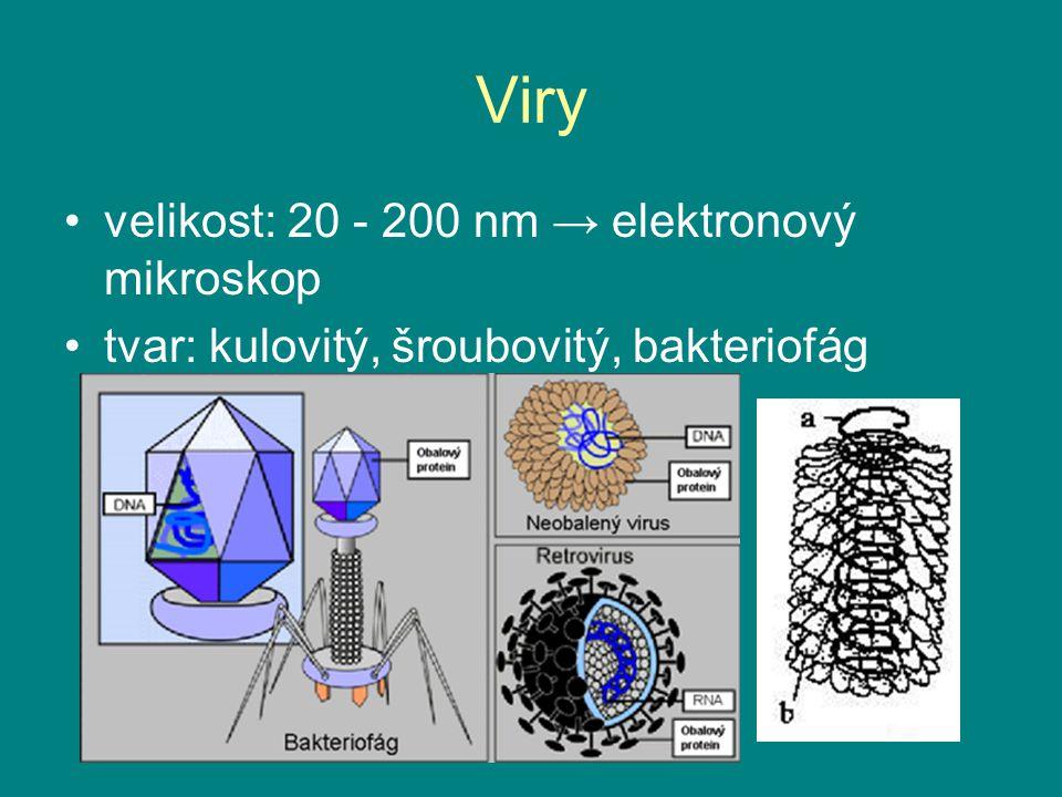 Viry velikost: 20 - 200 nm → elektronový mikroskop
