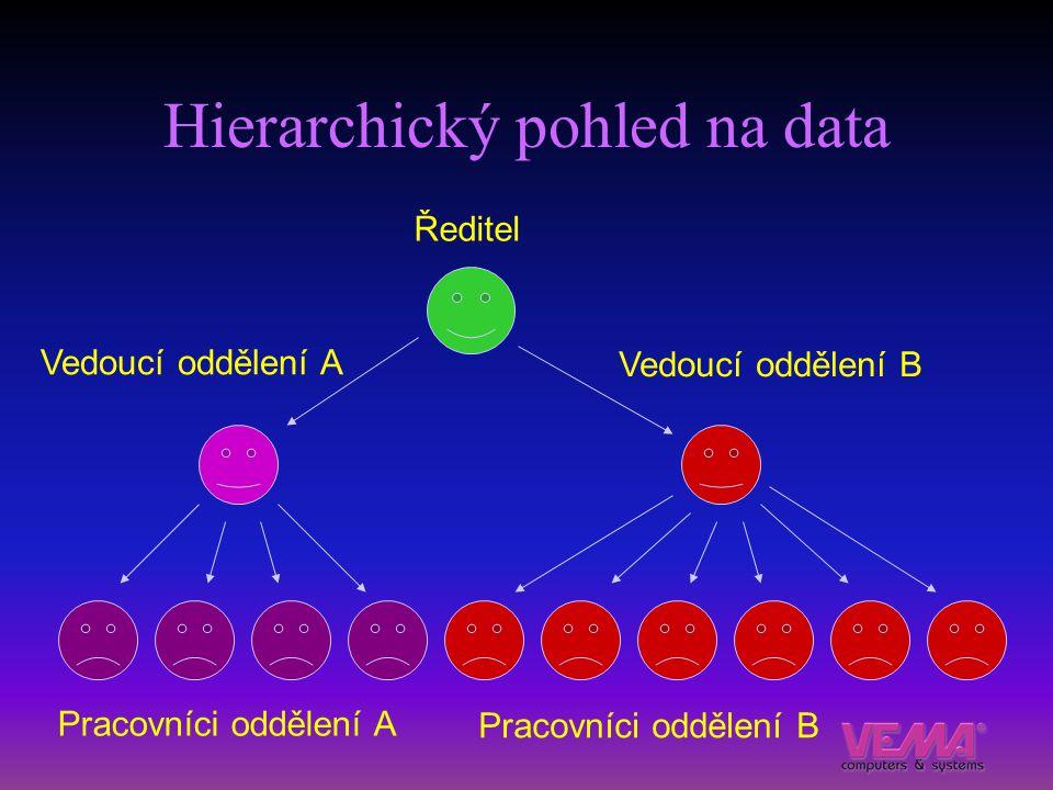 Hierarchický pohled na data