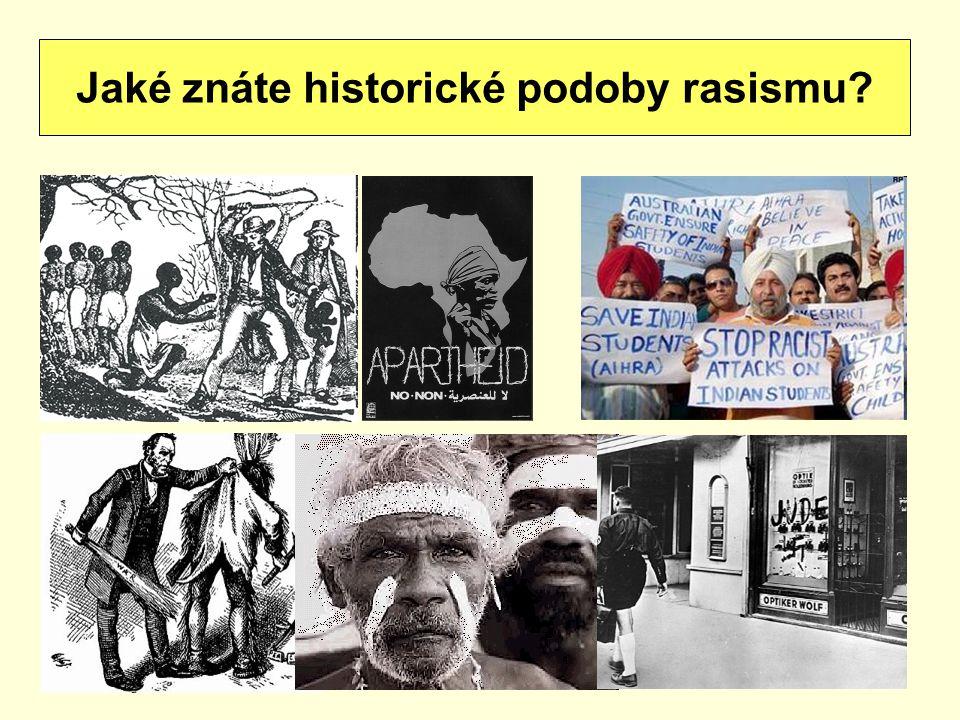 Jaké znáte historické podoby rasismu