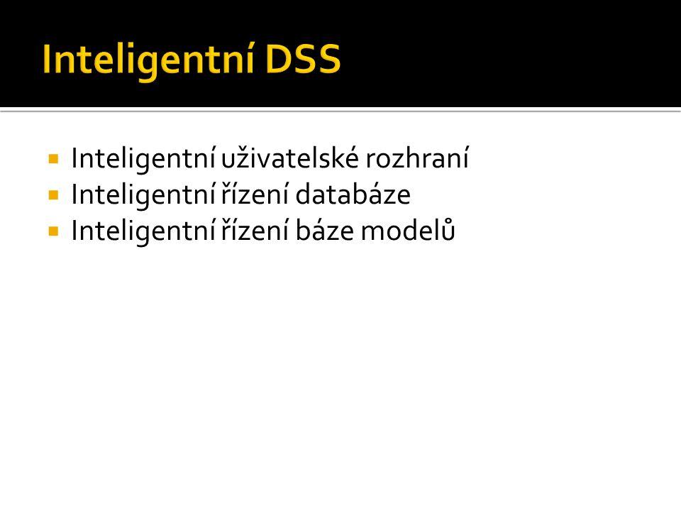 Inteligentní DSS Inteligentní uživatelské rozhraní