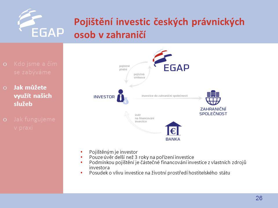 Pojištění investic českých právnických osob v zahraničí
