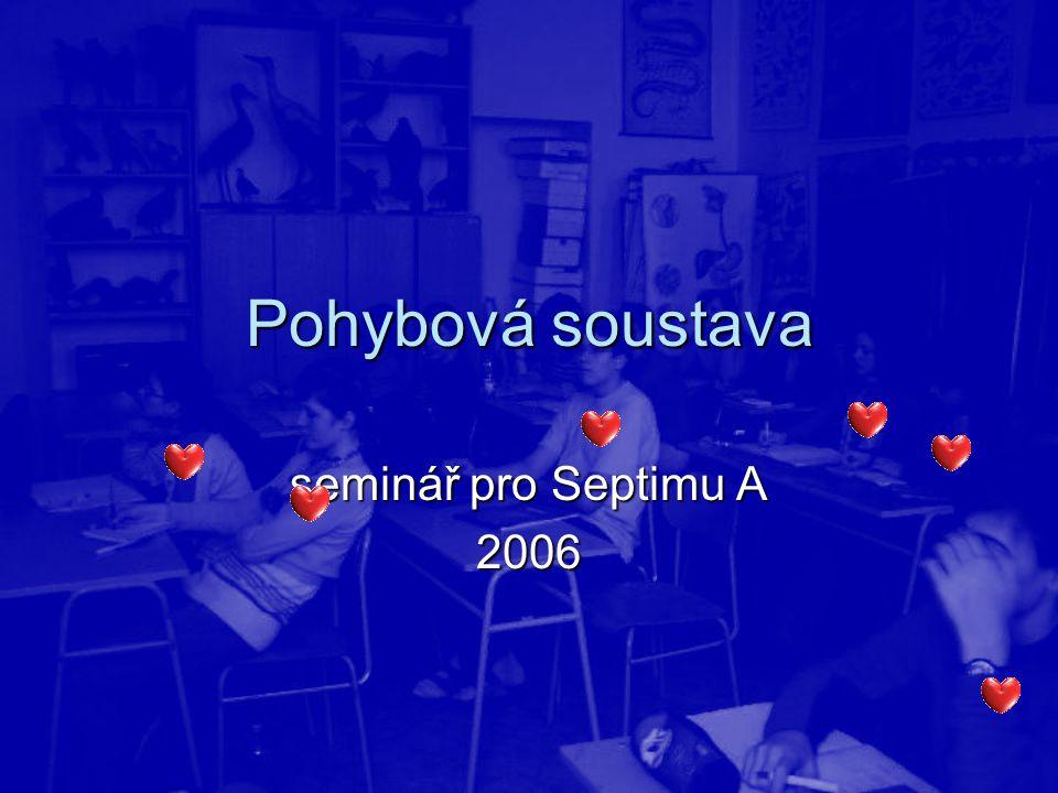 Pohybová soustava seminář pro Septimu A 2006