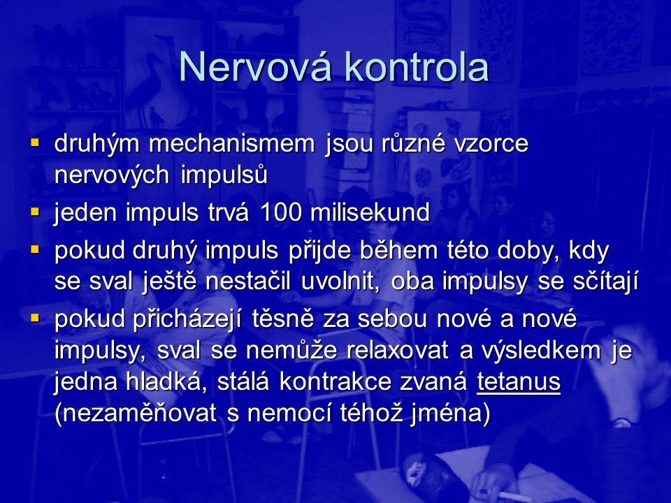Nervová kontrola druhým mechanismem jsou různé vzorce nervových impulsů. jeden impuls trvá 100 milisekund.