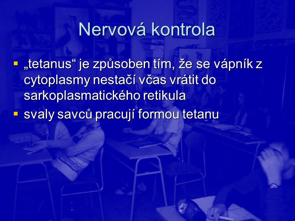 """Nervová kontrola """"tetanus je způsoben tím, že se vápník z cytoplasmy nestačí včas vrátit do sarkoplasmatického retikula."""