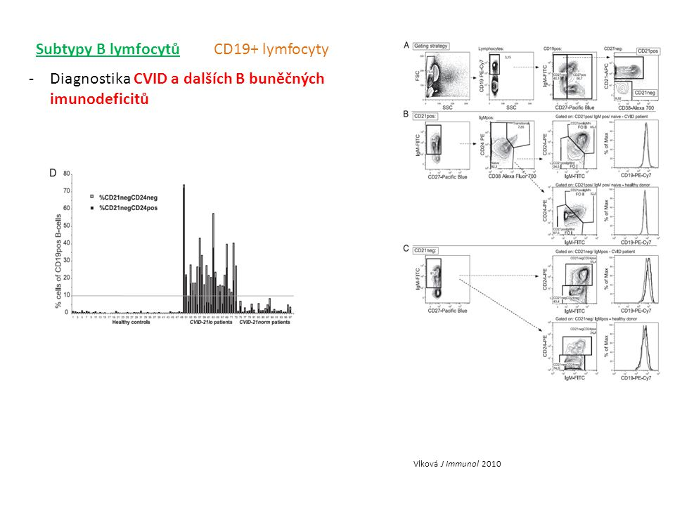 Diagnostika CVID a dalších B buněčných imunodeficitů