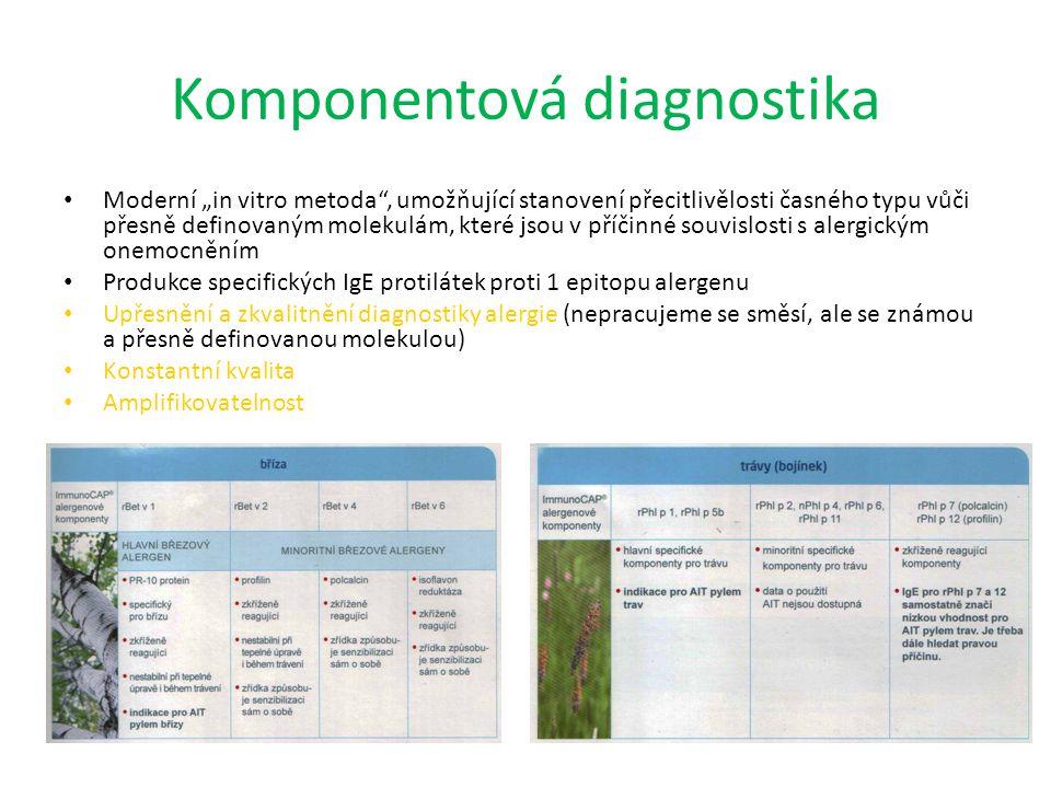 Komponentová diagnostika