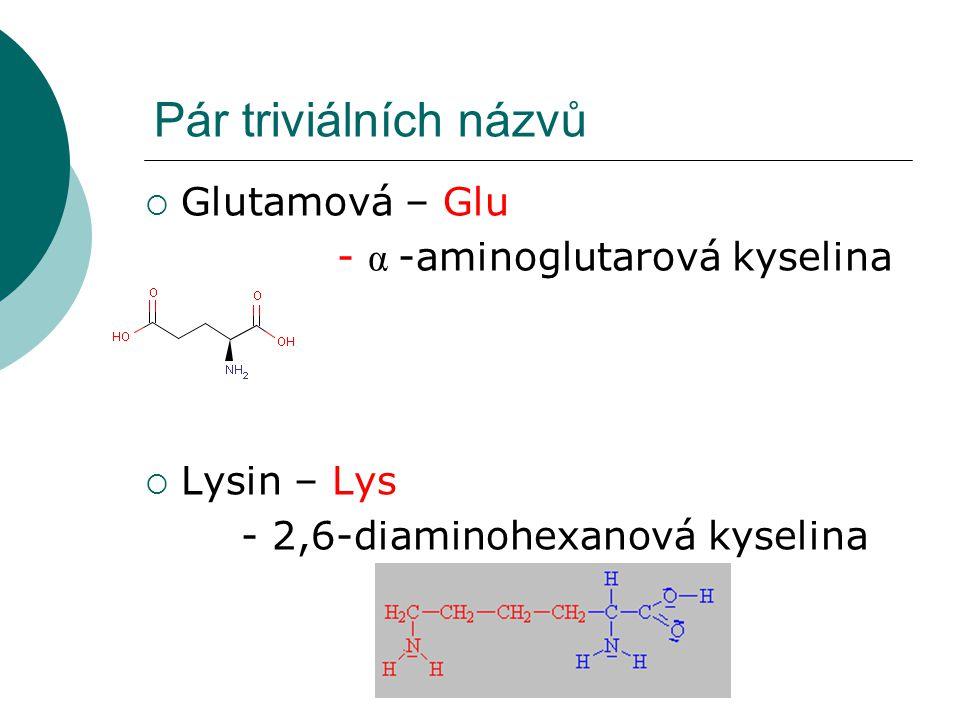 Pár triviálních názvů Glutamová – Glu - α -aminoglutarová kyselina