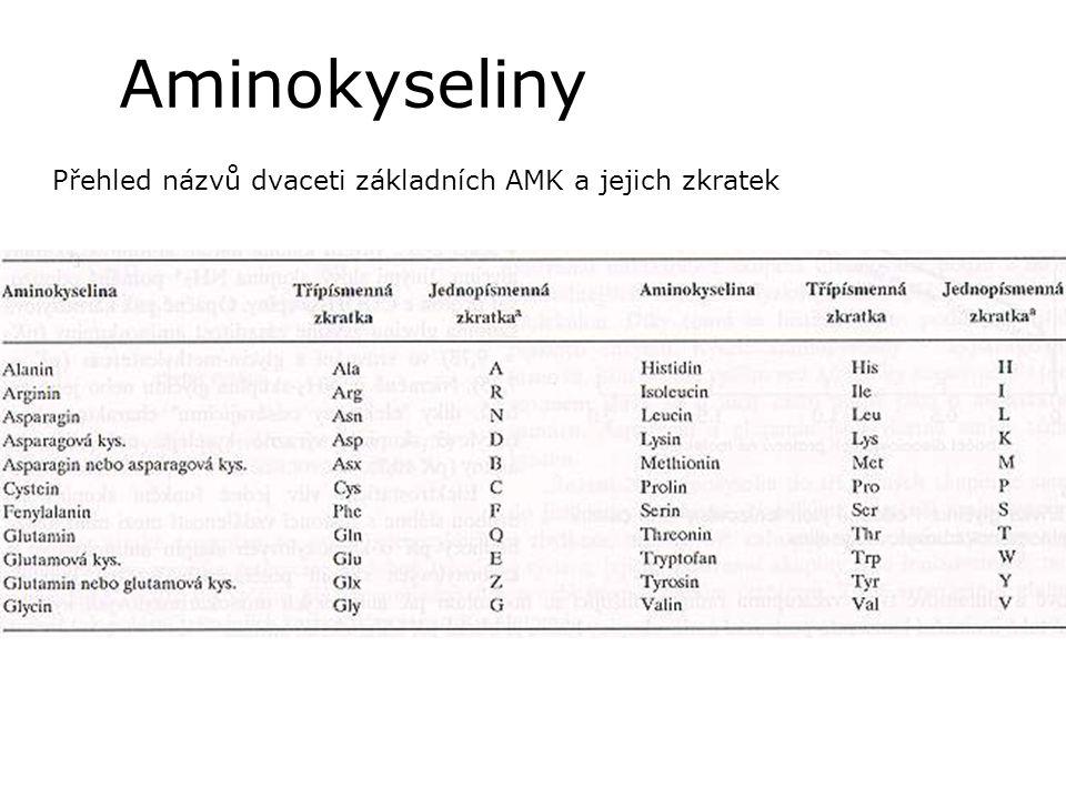 Aminokyseliny Přehled názvů dvaceti základních AMK a jejich zkratek