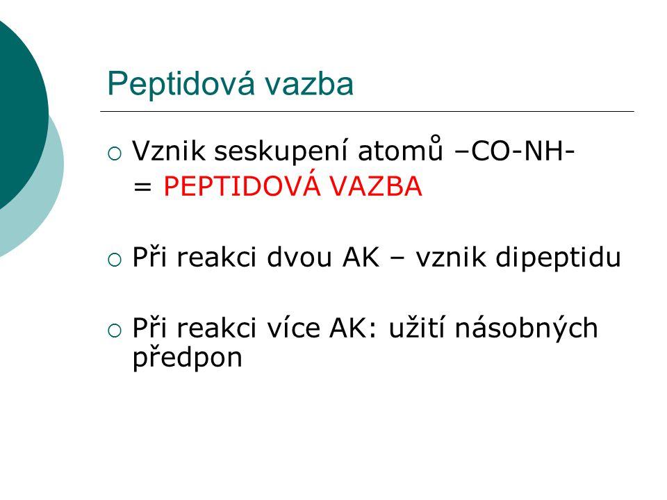 Peptidová vazba Vznik seskupení atomů –CO-NH- = PEPTIDOVÁ VAZBA