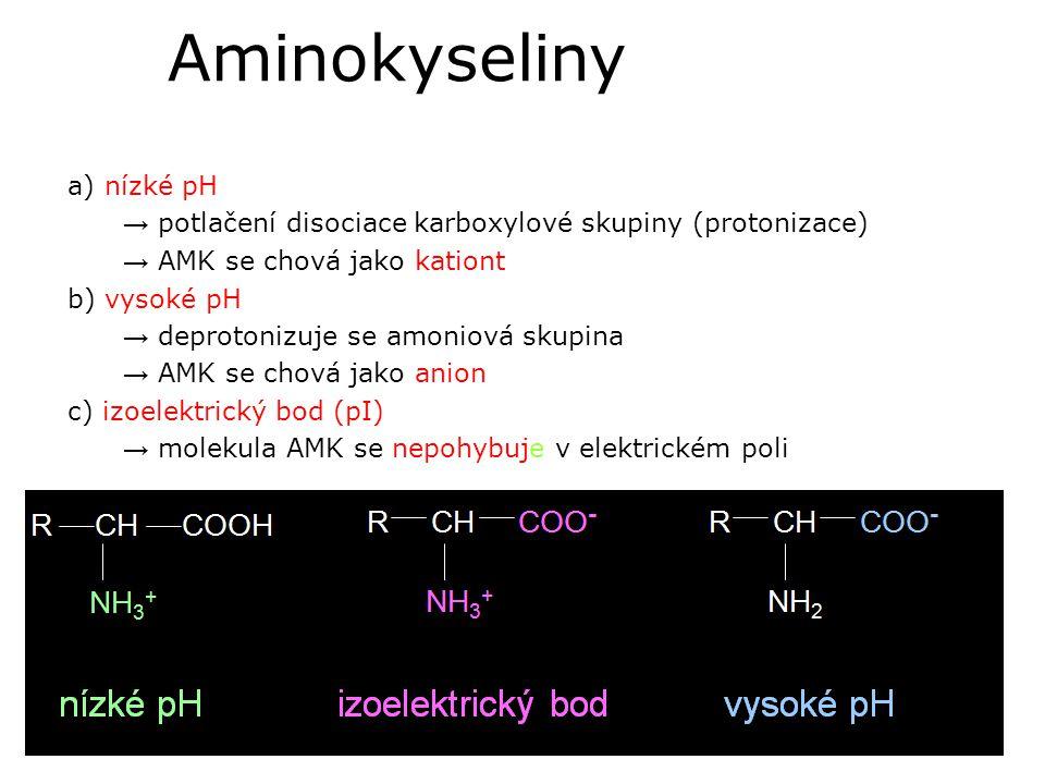 Aminokyseliny a) nízké pH