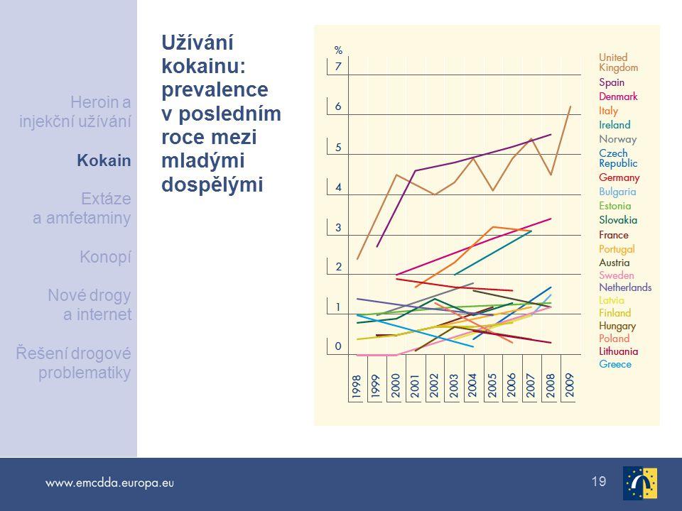 Užívání kokainu: prevalence v posledním roce mezi mladými dospělými