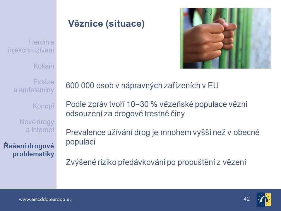 Věznice (situace) 600 000 osob v nápravných zařízeních v EU