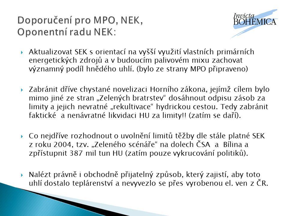 Doporučení pro MPO, NEK, Oponentní radu NEK:
