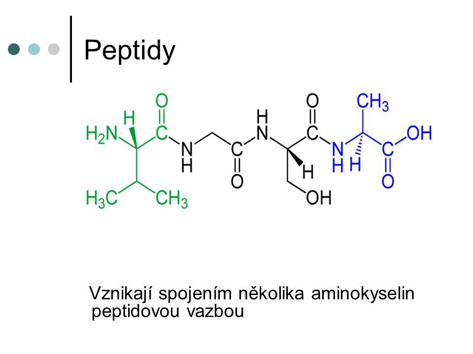 Peptidy Vznikají spojením několika aminokyselin peptidovou vazbou