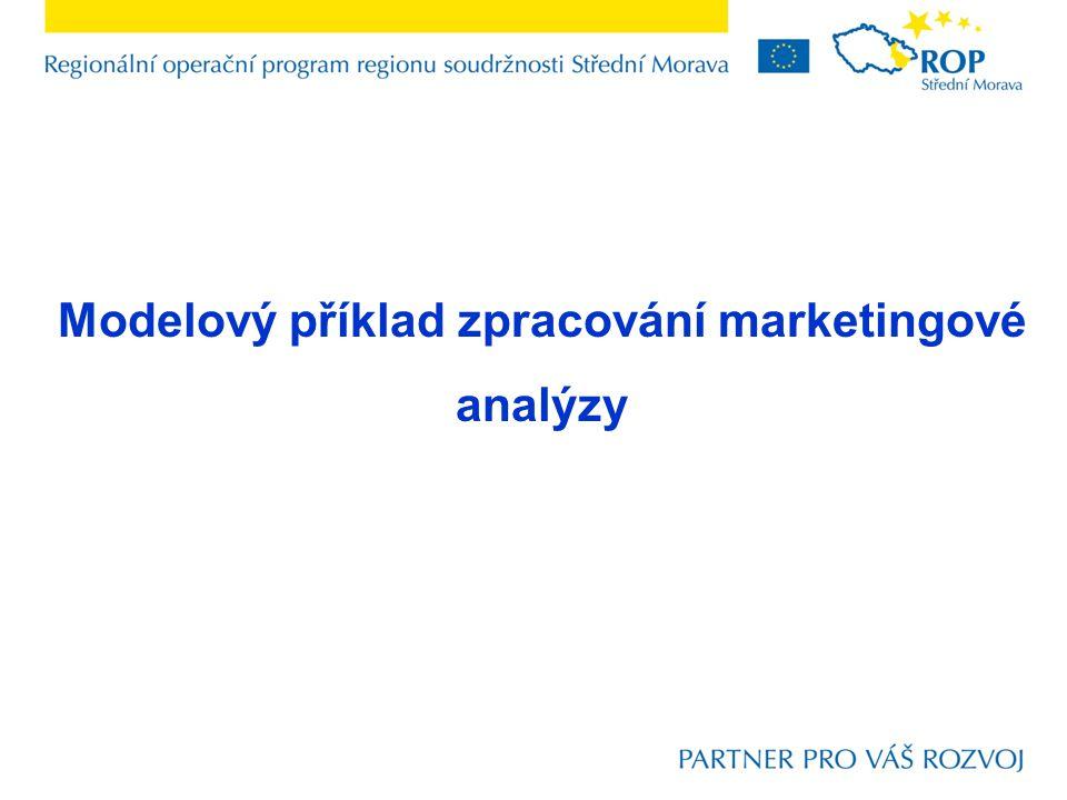 Modelový příklad zpracování marketingové analýzy