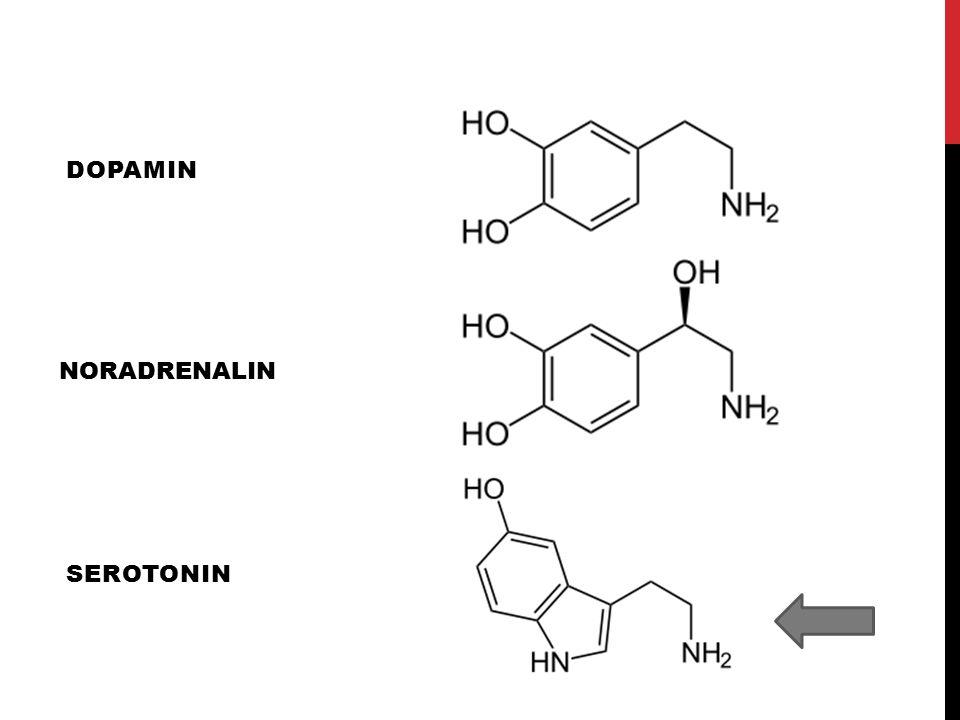 Dopamin NORADRENALIN Serotonin