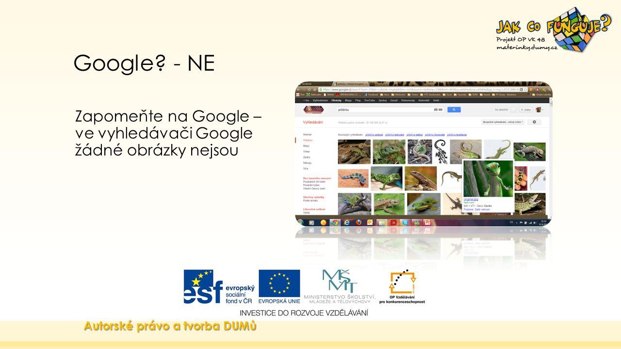 Google. - NE Zapomeňte na Google – ve vyhledávači Google žádné obrázky nejsou.