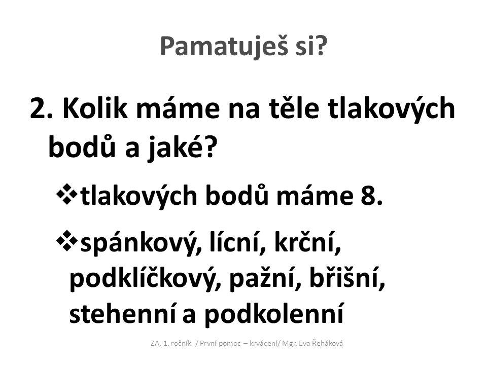 ZA, 1. ročník / První pomoc – krvácení/ Mgr. Eva Řeháková