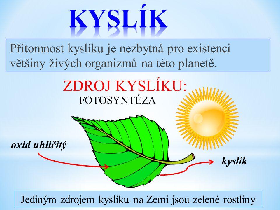 Jediným zdrojem kyslíku na Zemi jsou zelené rostliny