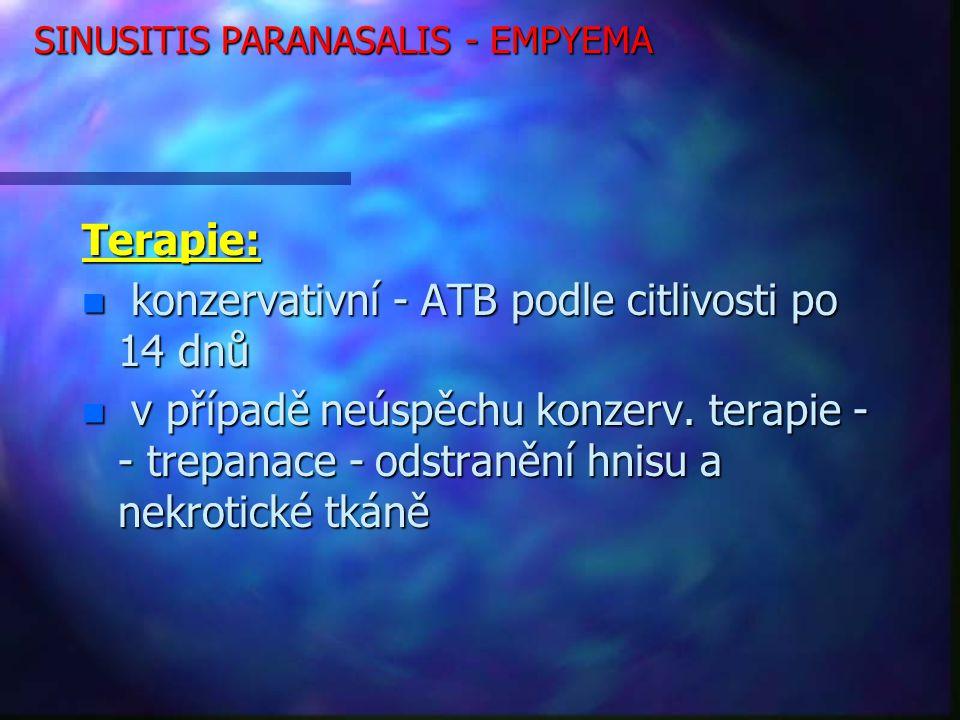 SINUSITIS PARANASALIS - EMPYEMA