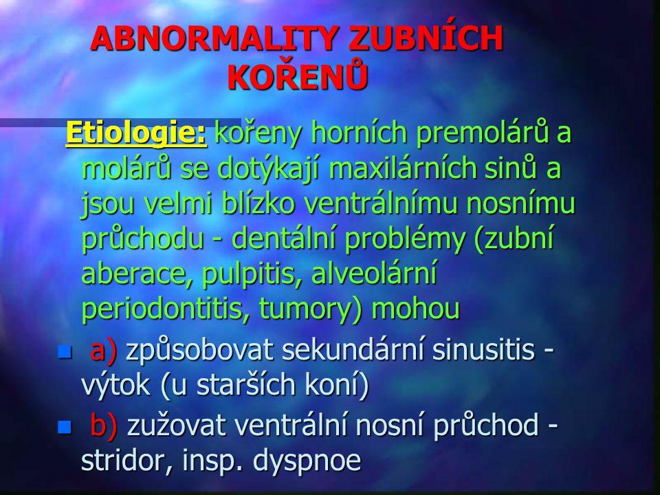 ABNORMALITY ZUBNÍCH KOŘENŮ