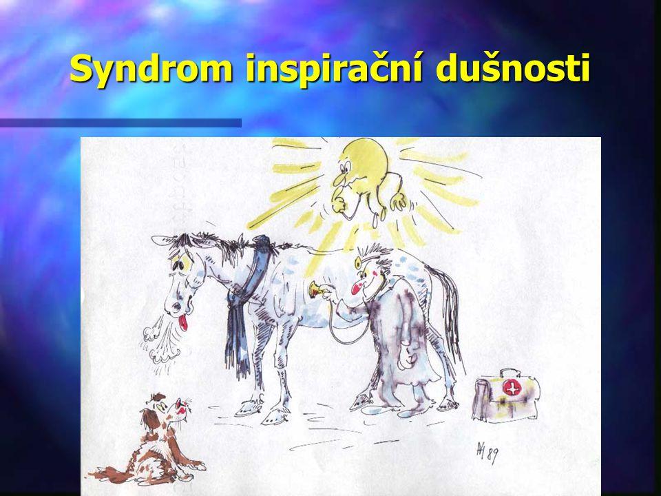Syndrom inspirační dušnosti