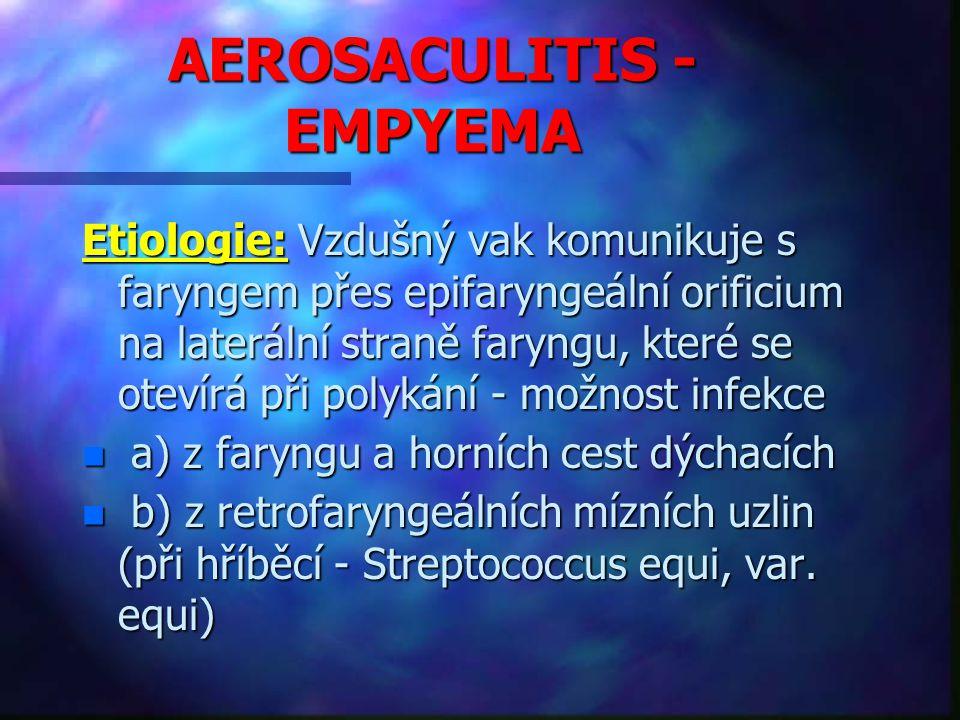 AEROSACULITIS - EMPYEMA