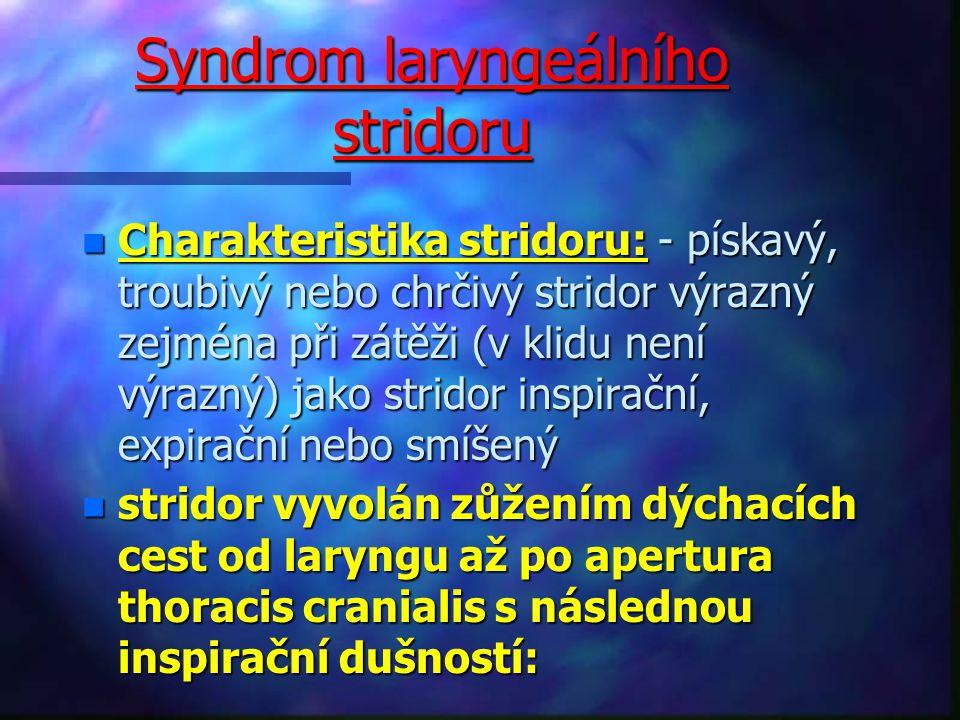 Syndrom laryngeálního stridoru