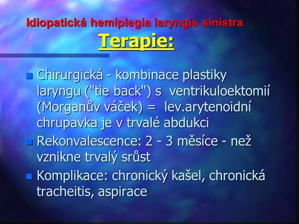 Idiopatická hemiplegia laryngis sinistra Terapie:
