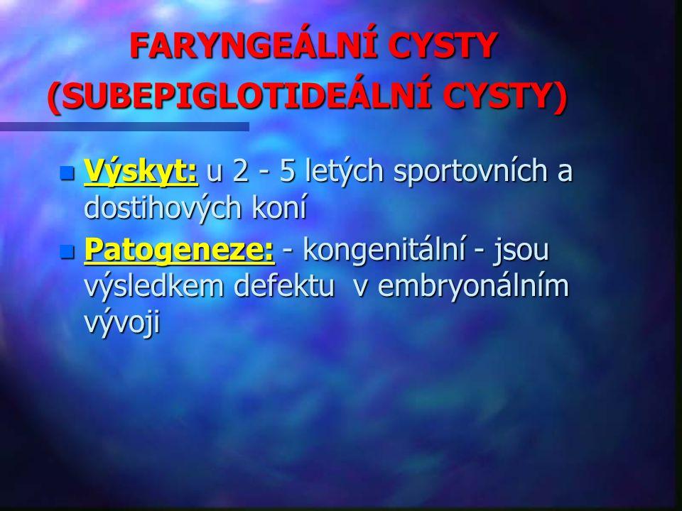 FARYNGEÁLNÍ CYSTY (SUBEPIGLOTIDEÁLNÍ CYSTY)