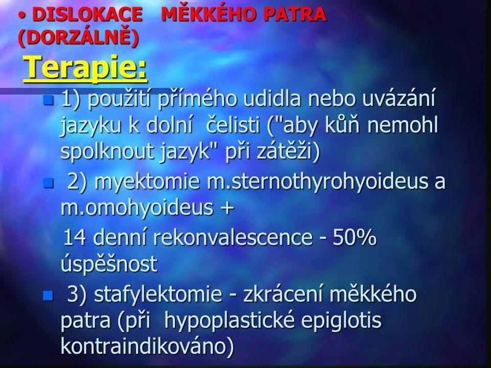 DISLOKACE MĚKKÉHO PATRA (DORZÁLNĚ) Terapie: