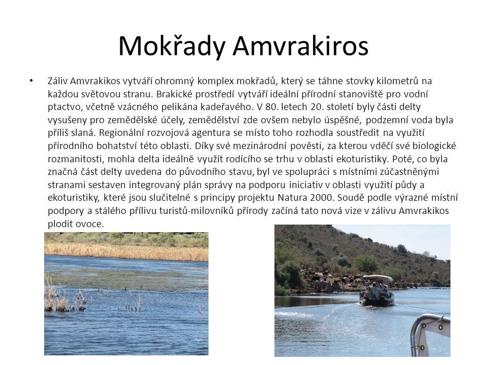Mokřady Amvrakiros
