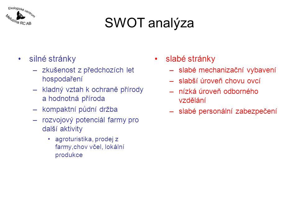 SWOT analýza silné stránky slabé stránky