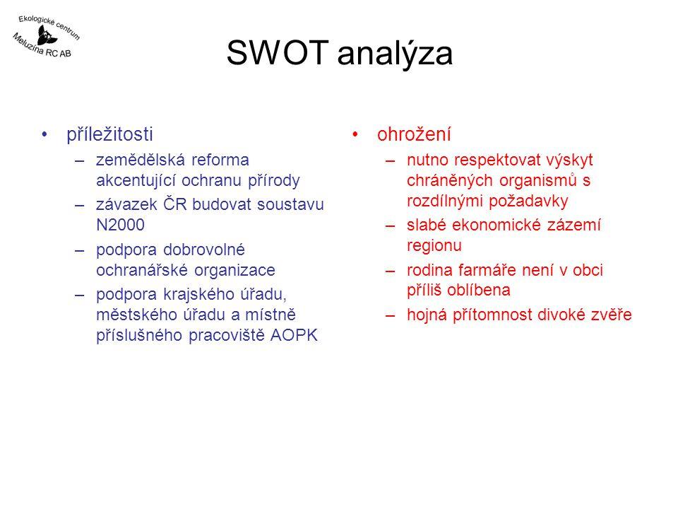 SWOT analýza příležitosti ohrožení