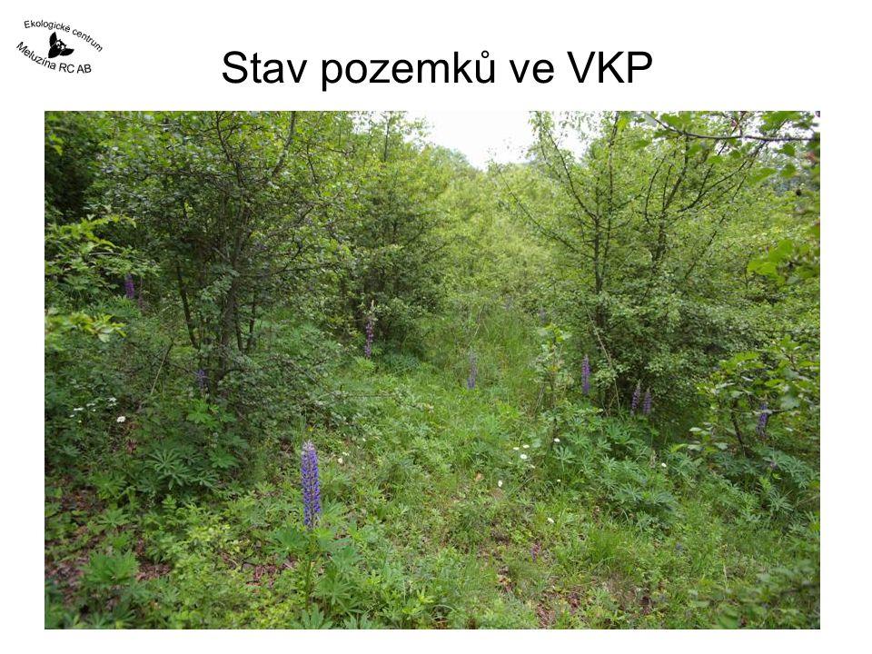 Stav pozemků ve VKP