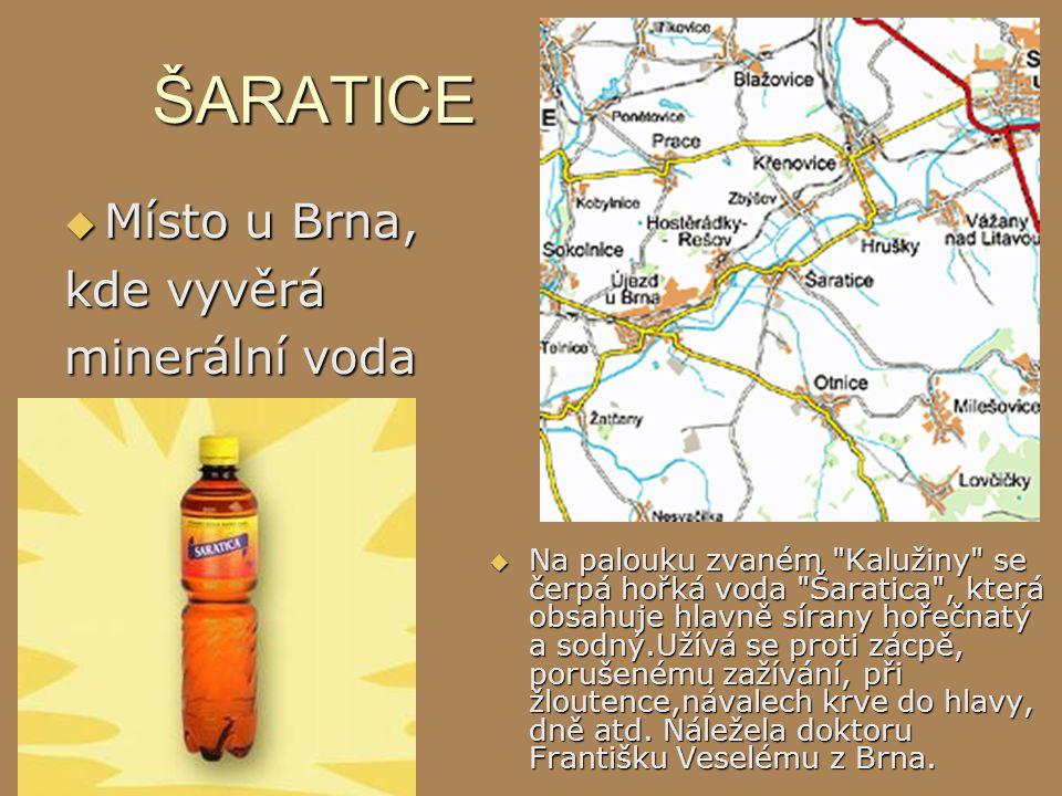 ŠARATICE Místo u Brna, kde vyvěrá minerální voda