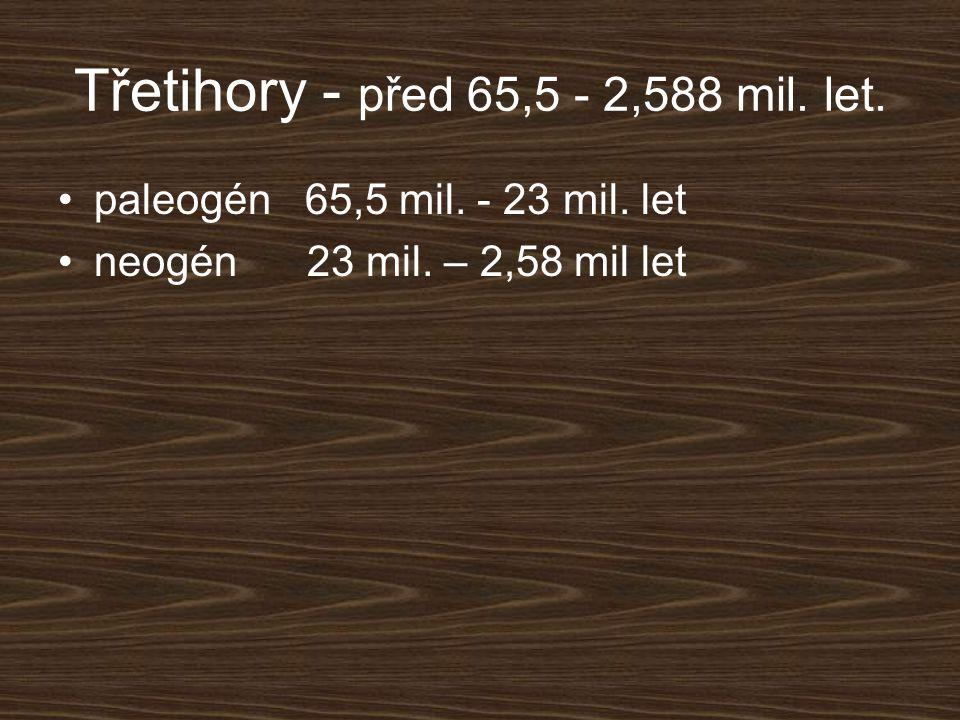 Třetihory - před 65,5 - 2,588 mil. let.