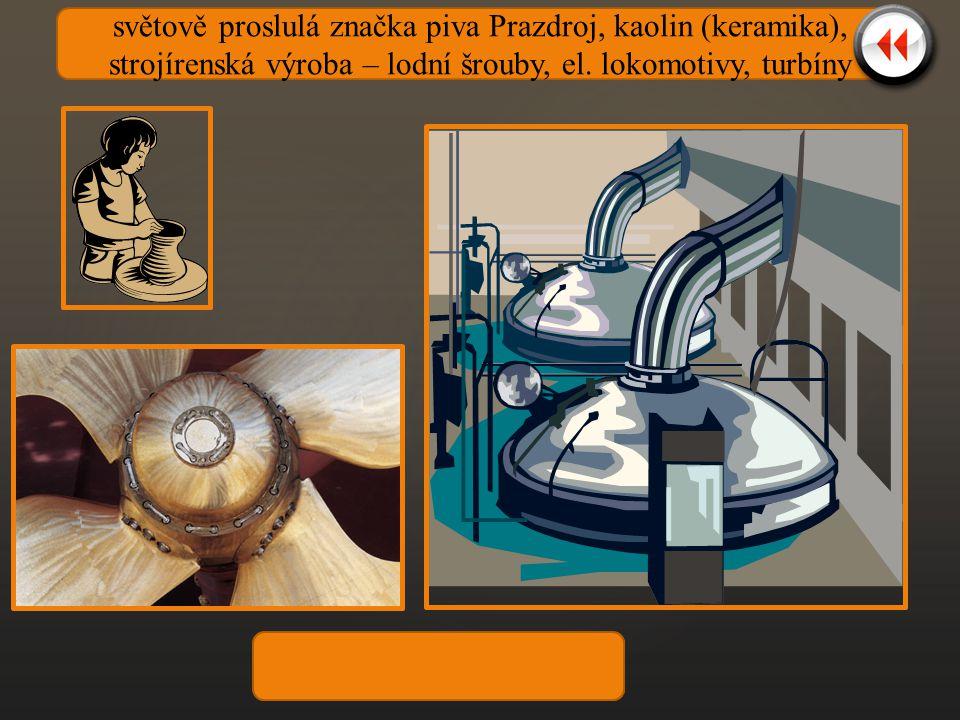 světově proslulá značka piva Prazdroj, kaolin (keramika), strojírenská výroba – lodní šrouby, el. lokomotivy, turbíny