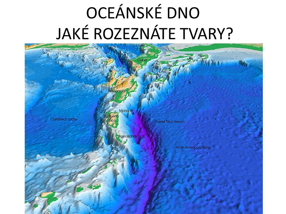 OCEÁNSKÉ DNO JAKÉ ROZEZNÁTE TVARY